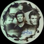 "Stay On These Roads UK 12"" Picture Disc"
