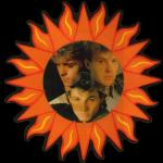 The Sun Always Shines On TV - Picture Disc