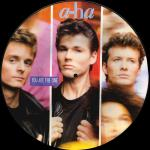 "You Are The One 12"" Picture Disc"