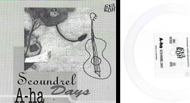 Scoundrel Days Polish Flexi - Cover + Record